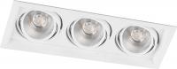 Светодиодный светильник  карданный 3x20W белый